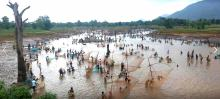 mass fishing in duduki darha bolangir